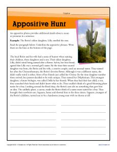 appositive hunt printable appositive worksheets. Black Bedroom Furniture Sets. Home Design Ideas