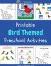 Birds Preschool Theme Activities