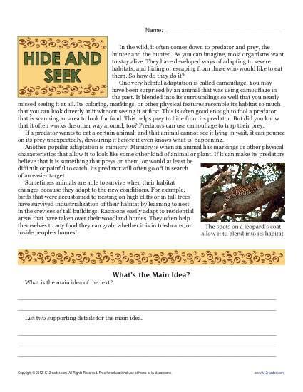 Sixth Grade Reading Comprehension Worksheet | Hide and Seek