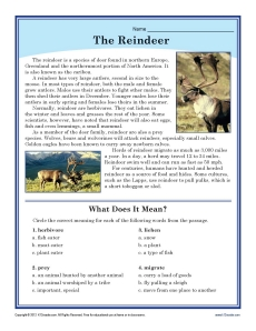 The Reindeer - Reading Passage | Christmas Worksheet for ...