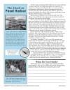 7th Grade Reading Comprehension Worksheets - K12reader