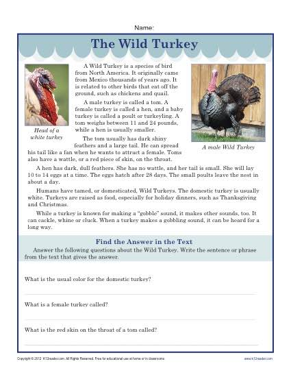 Printable Thanksgiving Worksheet The Turkey