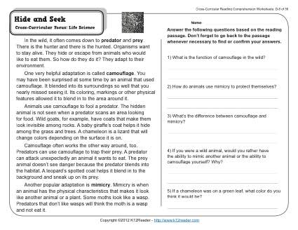Hide and seek 4th grade reading comprehension worksheet about this worksheet week 8 reading comprehension ibookread ePUb