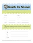 Identify the Antonym - Printable Worksheet Activity