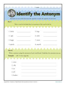 Identify the Antonym - Printable Worksheet Activity