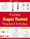 Shapes Preschool Theme Activities
