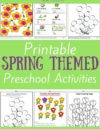 Spring Preschool Theme Activities