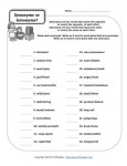 Printable Parts of Speech Activity - Synonyms or Antonyms?