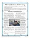 Classic Literature: Black Beauty