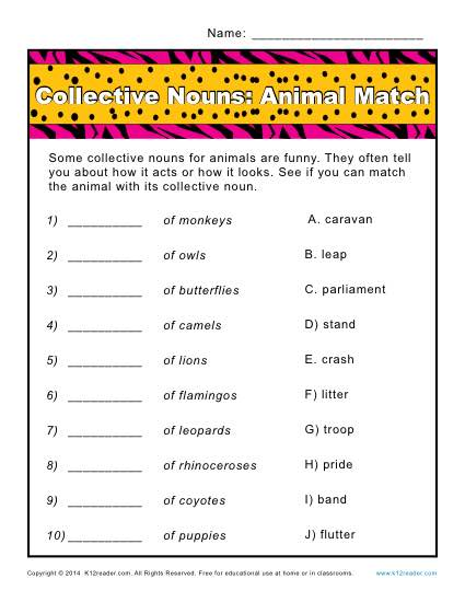Collective Noun Worksheets | Animals Match