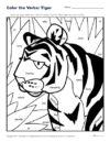 Color the Verbs: Tiger