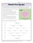 Diamante Poem Activity on Synonyms