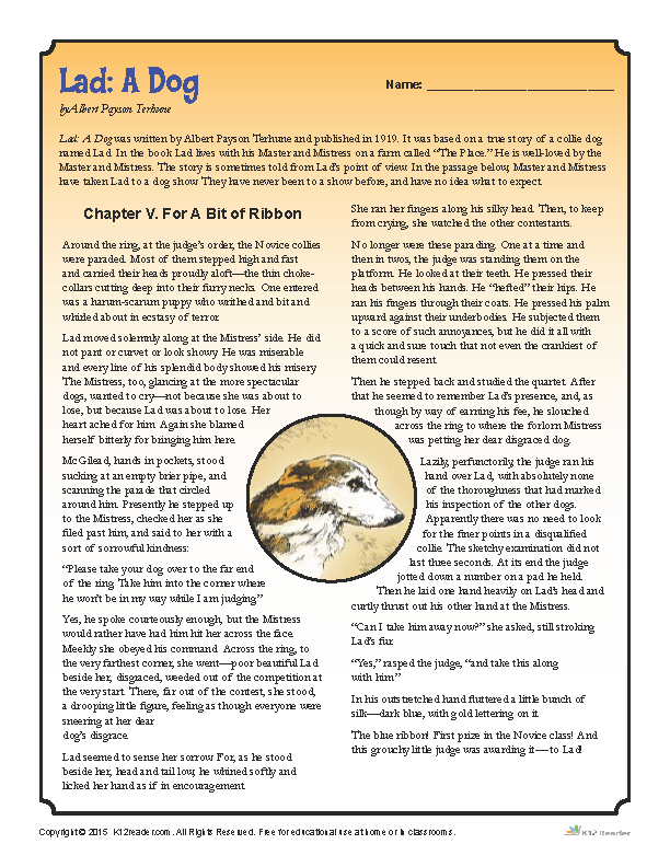 Lad a Dog - Printable Reading Activity Worksheets