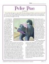 Peter Pan Reading Comprehension Set