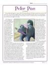 Peter Pan Reading Comprehension Set