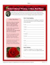 Robert Burns Poetry: A Red, Red Rose