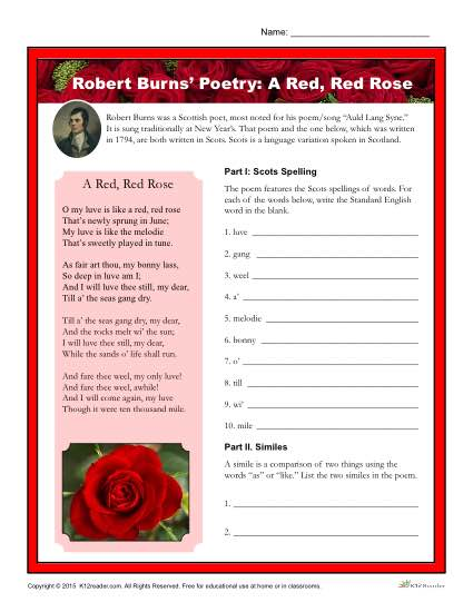 Robert Burns Poetry Printable Activity - A Red, Red Rose