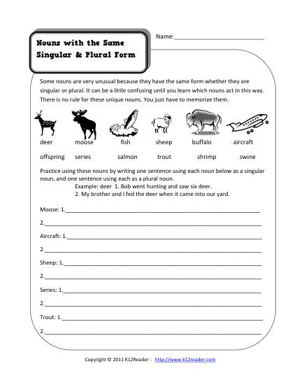 Same Singular And Plural Nouns 2nd Grade Noun Worksheet