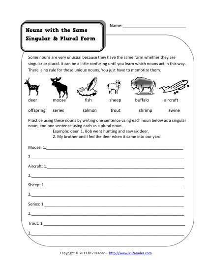 Same Singular and Plural Nouns | 2nd Grade Noun Worksheet