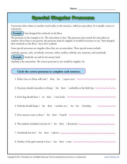 Special Singular Pronouns Worksheet Activity