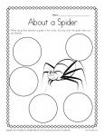 Kindergarten Writing Prompt - About a Spider!