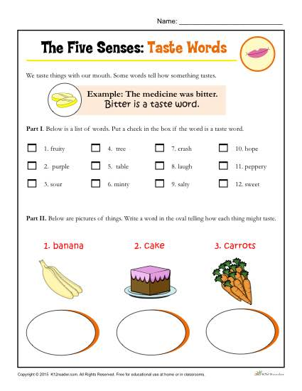 The Five Senses Printable Worksheet Activity for Kindergarten and First Grade - Taste Words
