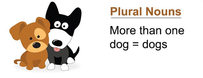 What is a Plural Noun?