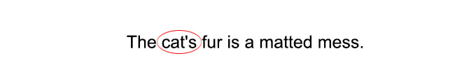 What is a Possessive Noun?