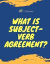 What is Subject Verb Agreement?