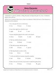 Story Elements Worksheet - Who is a Character?