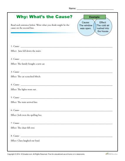 Why, What's The Cause? Worksheet Activity