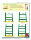 Animal Word Ladders