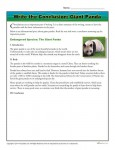Write a Conclusion Writing Activity - Giant Panda